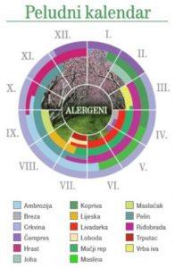 Godišnje pojave peludnih alergija - kalendar